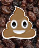 Geek Shock # 344 - Add Raisins to Taste