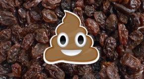 Geek Shock # 344 - Add Raisins to Taste